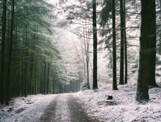In de Ardennen valt sneeuw die tijdelijk blijft liggen