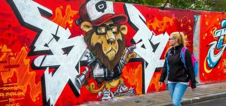 Tilburger wil liever een mooie muurschildering, geen vage tags