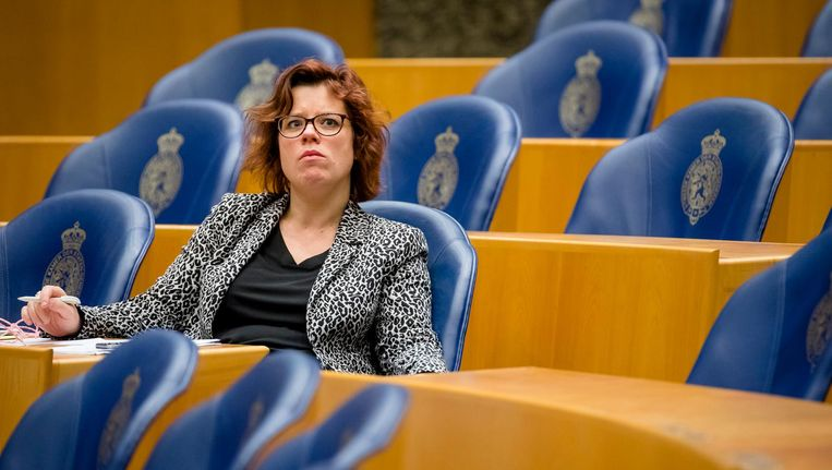 Linda Voortman, Kamerlid GroenLinks. Beeld ANP
