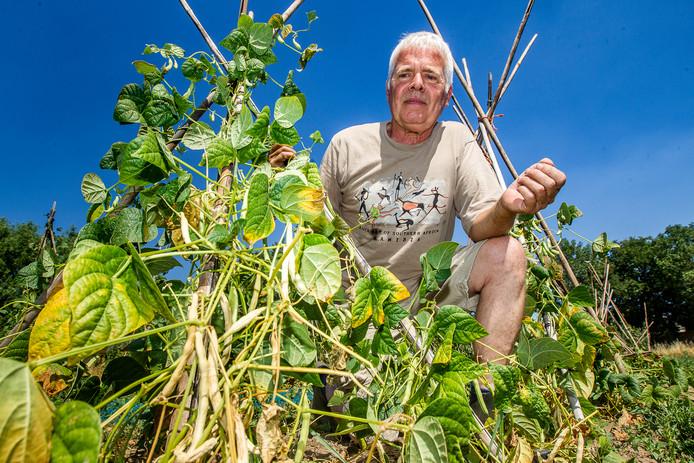 Bioboer Jan van Arragon heeft ontzettend last van de droogte.