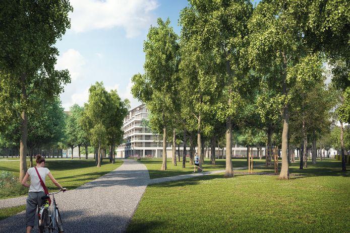 Zo zou de publieke groenzone tussen de Bolivarplaats en het toekomstige park Nieuw Zuid eruit gaan zien.
