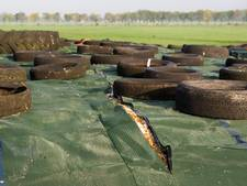 Nieuwe sabotage bij boer in Altforst, dekzeil kapot gesneden
