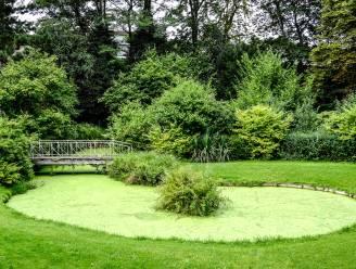 Beschermde Tuinen Messeyne krijgt renovatie en vijver wordt geruimd om geurhinder en algengroei te vermijden