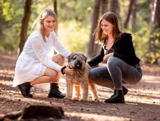 """Nederlandse zusjes doen hartverscheurende oproep: """"Wie heeft onze hond doodgeschopt?"""""""
