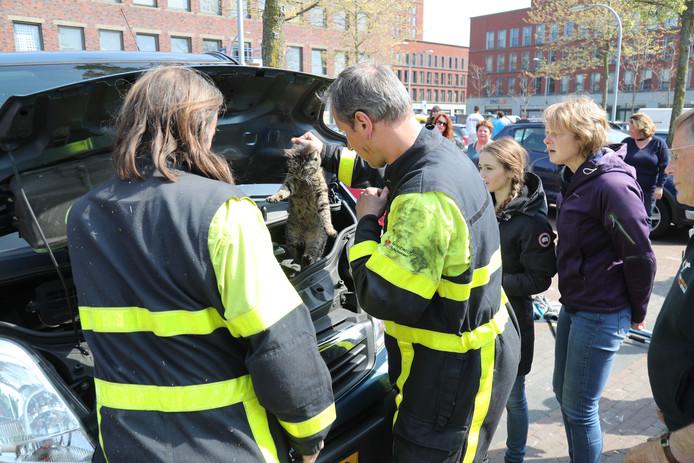 Kat zat vast in motorkap in Ypenburg.