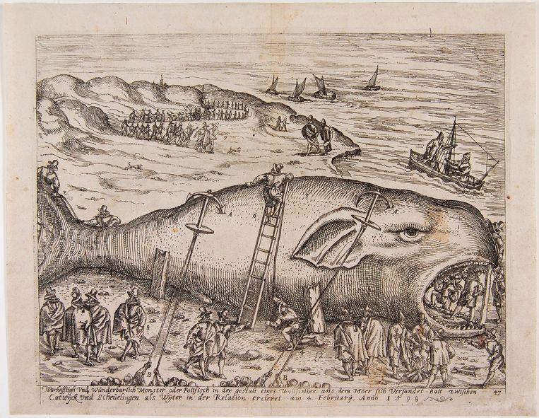 Anoniem (Duitsland, eind 16de eeuw), 'Gestrande walvis bij Berckhey', 1598, ets. Beeld Huis Van Gijn (Atlas Van Gijn), Dordrecht