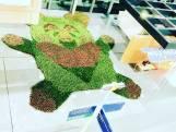 Kunstenares maakt beer van 10.000 vetplantjes bij ingang Erasmus MC als ode aan zorgpersoneel