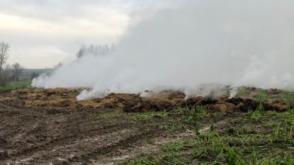 250 balen hooi gaan in vlammen op