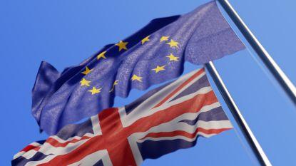 Dag van de waarheid voor May en haar brexit-plan: wat, waarom en hoe?