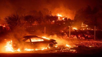Bosbranden bedreigen Californië