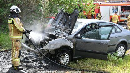 Geparkeerde wagen brandt uit in Boom