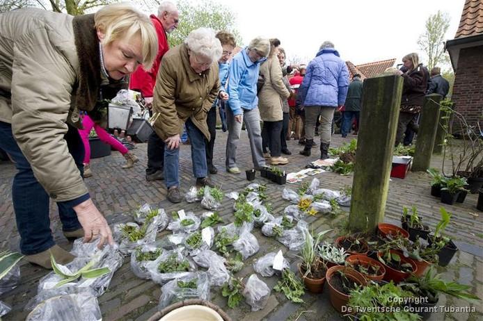 WBO Wonen houdt zaterdag weer een Plantjesmarkt.