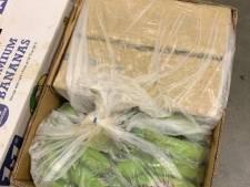 OM eist celstraffen tegen mannen uit Berkel-Enschot en Vlijmen voor cocaïnesmokkel via nepbedrijf