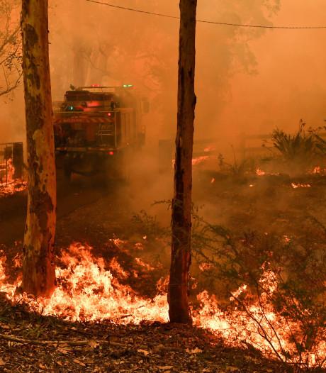 Grote zorgen om megabrand bij Sydney: 'We kunnen het vuur niet tegenhouden'