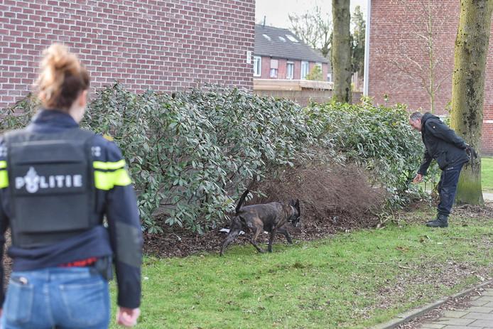 De politiehond zoekt mee.