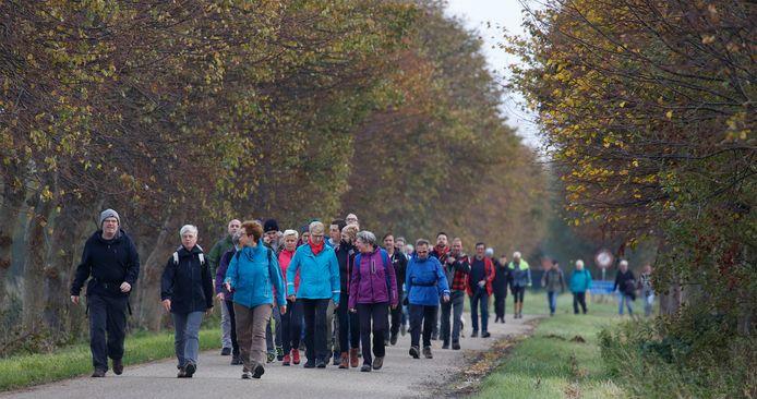Wandelaars starten in Hoofdplaat en arriveren na zo'n negen kilometer op de Oranjedijk bij IJzendijke.