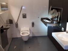 Stationstoilet van Kesteren in brand gestoken en vernield: 'Is dat nou leuk!?'