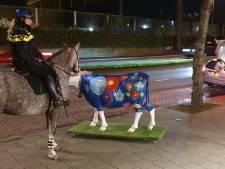 Eigenaren Cows & More komen in actie voor verbannen koe: 'Bertha moet buiten blijven!'