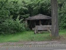 'Nachtmerrie van elke vrouw' uit Diessen krijgt 4 jaar cel en tbs voor Kempen-verkrachtingen