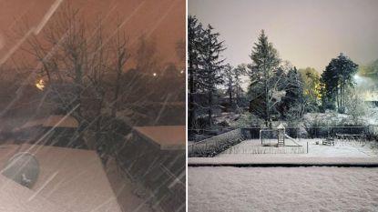Delen van Vlaanderen worden wakker onder laagje sneeuw en dat ziet er zo uit