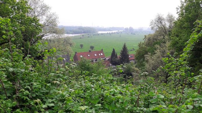Hoe groen Wageningen is, is goed te zien vanaf het Bergpad