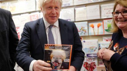 Britse premier ontkent pogingen kandidaten Brexit Party om te kopen: geen titels aangeboden aan rivalen