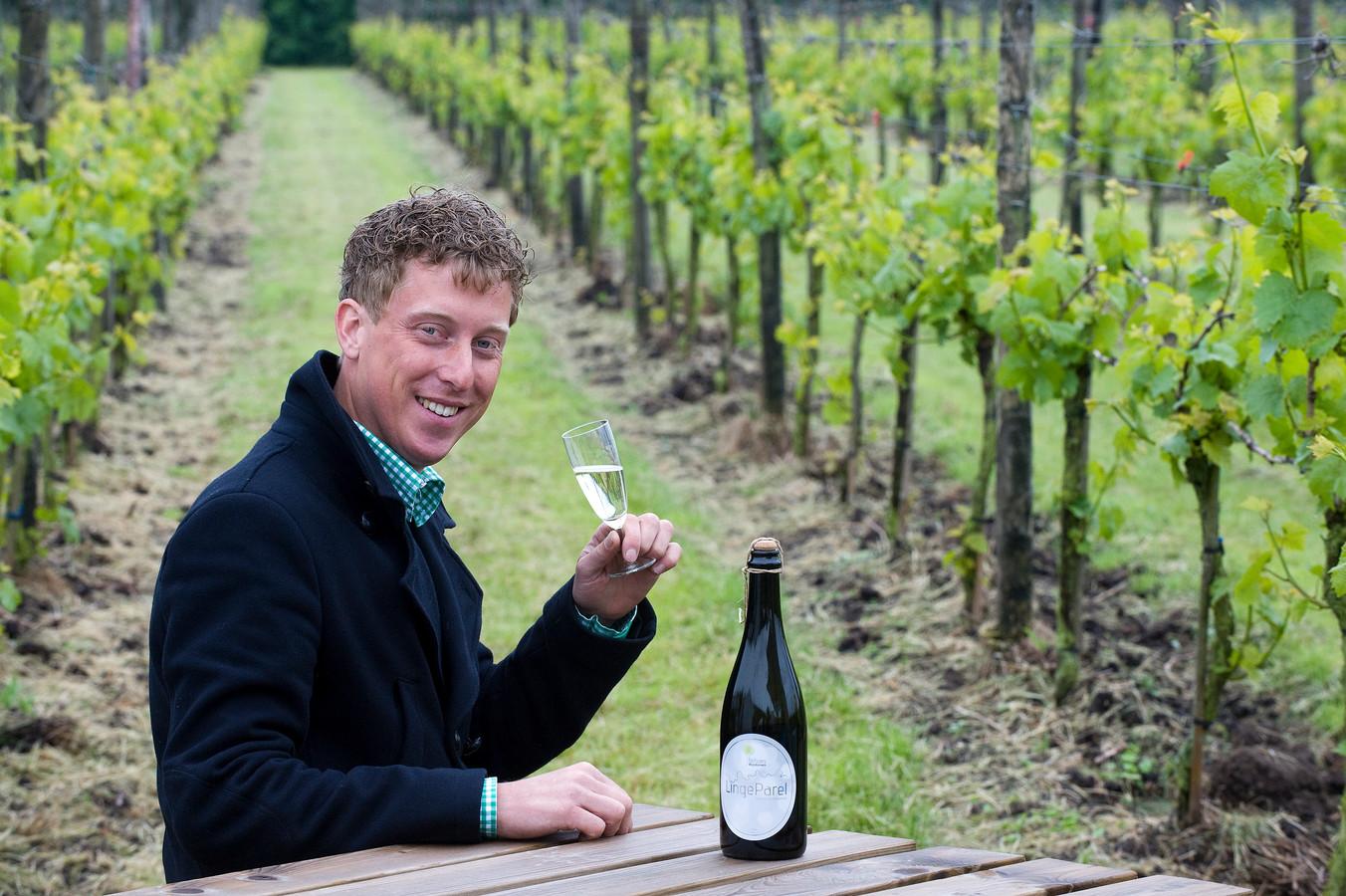 Diederik Beker in zijn eigen wijngaard in Erichem. Schoffelen rond de wijnstokken gebeurt vanaf dit jaar met een e-trekker.