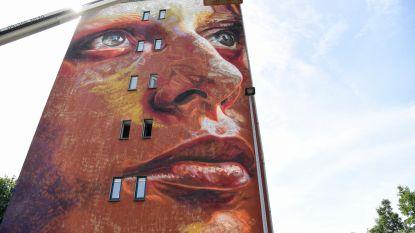Zien en gezien worden in Boonwijk