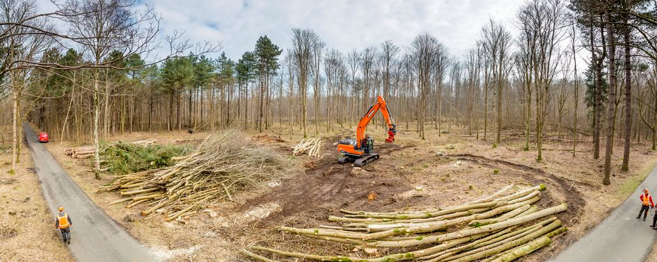 Windmolens in het bos: Noord-Holland krijgt de primeur De aanleg van een nieuw windmolenpark is voor