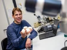 Champignons 2.0: Wageningse onderzoekers openen de deur voor nieuwe champignons