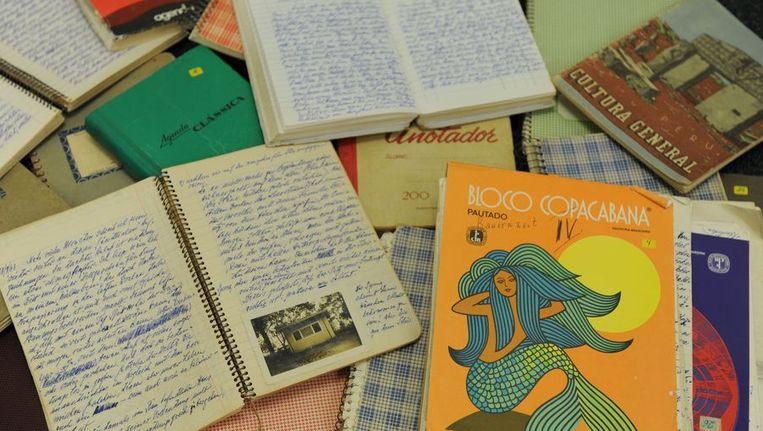 De dagboeken van Mengele. Beeld afp
