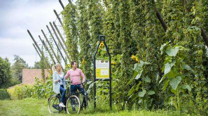 Brouwerij St.Bernardus verhuurt voortaan ook fietsen