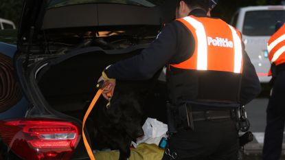 Grootschalige politieactie op E40 in West-Vlaanderen tegen rondtrekkende inbrekersbendes