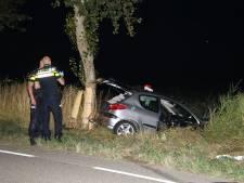 Auto ramt boom in Vrouwenpolder: bijrijder gewond, bestuurster aangehouden