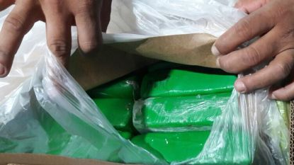 Franse werknemers vinden meer dan 600 kilo cocaïne die ingevoerd werd vanuit Antwerpen