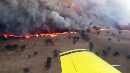 """Australië geteisterd door tientallen brandhaarden: """"Het enige wat ons nog rest hebben we aan"""""""
