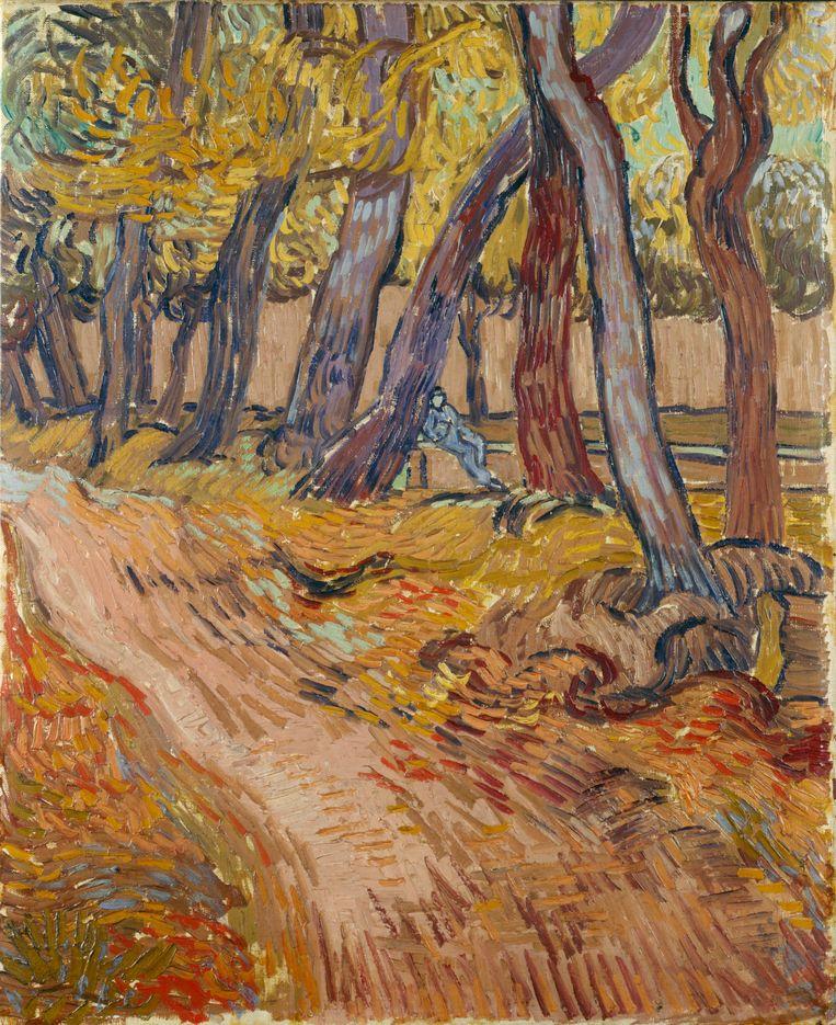 Vincent van Gogh, Path in the Garden of the Asylum, 1889. Beeld Collection Kröller Müller Museum