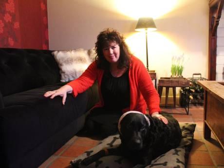 Annetta werd aangevallen door 4 'pitbulls' in Zoutelande en rende de zee in: 'Absurd dat ze los liepen'