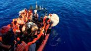 Katje van migrant moet zes maanden in quarantaine op Lampedusa wegens risico op hondsdolheid