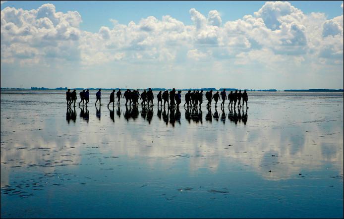 Wadlopen bij Schiermonnikoog. Foto ter illustratie.