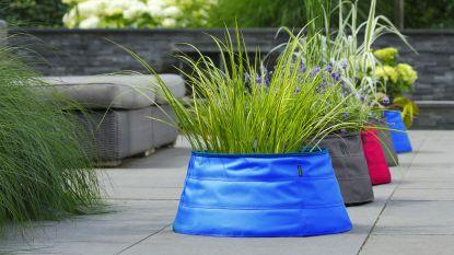 De zomer te heet? Zet een kleine waterpartij op je terras: mini vijver, maxi effect