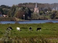 Nieuwe dijkverzwaring op komst, waterschap gaat 11 kilometer van Lekdijk versterken