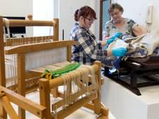 Museum Boxtel toont damasten schatten