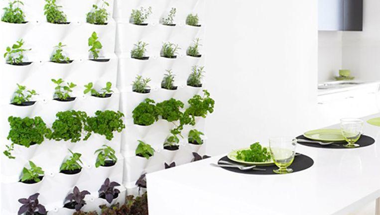 Verticale Tuin Binnen : Vangst van de dag: verticale tuin van minigarden style nina hln