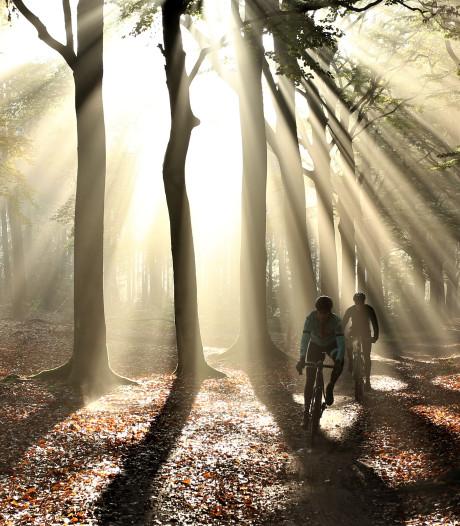 Lekker (c)rossen door de bossen: boswachter is ongerust