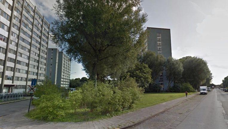 Het parkje aan de Kikvorsstraat.