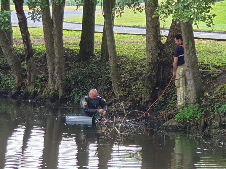 De duikers van de brandweer kwamen ter plaatse om zuurstof in het water te pompen.