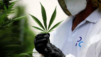83 gram cannabis en xtc gevonden in woning, bewoner verhoord