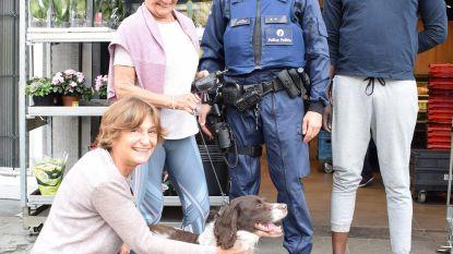 """Vrouw en hond na zes jaar (!) herenigd door waakzame burger: """"Houston wijkt geen seconde meer van m'n zijde"""""""