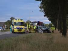 Auto rijdt lantaarnpaal omver, ramt lelijke eend en botst frontaal op een boom, twee gewonden